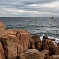 Acadia by Karin Pinkham