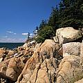 Acadia National Park Maine - Bass Harbor Head Lighthouse by Erin Paul Donovan