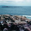 Acadia Park Maine Coast by Ron Swonger