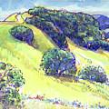 Acalanes Ridge, Lafayette, Ca by Judith Kunzle