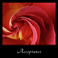 Acceptance 1 by Mary Jo Allen