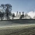 Acomb Misty Day by David Taylor