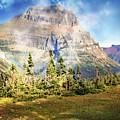 Across The Meadow by Marty Koch
