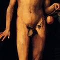 Adam 1507 by Durer Albrecht