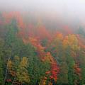 Adirondack Autumn Colors by Tony Beaver