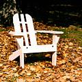Adirondack Chair by Paul Sachtleben