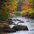 Adirondack Fall Stream 2 by Tony Beaver