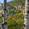 Adirondack Mountains New York by David Lee Thompson