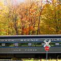 Adirondack Scenic Railroad by Steve Ohlsen