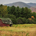 Adirondacks Barn In Autumn by Terry DeLuco