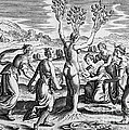 Adonis Being Born From Myrrha by Wellcome Images