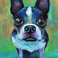 Adorable Boston Terrier Dog by Svetlana Novikova