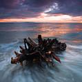 Adrift by Mike  Dawson
