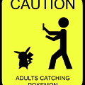 Adults Catching Pokemon 1 by Shane Bechler
