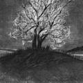 Advice From A Tree by J Ferwerda