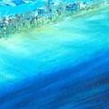 Aerial Coastline by Jorge Delara