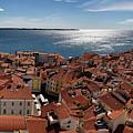 Aerial Panorama Of Piran Slovenia On Adriatic Sea With Marina An by Reimar Gaertner