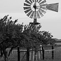 Aermotor Windmill San Joaquin County Ca by Troy Montemayor
