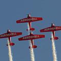Aeroshell Aerobatic Team by Susan Rissi Tregoning