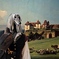 Afghan Hound-falconer And Castle Canvas Fine Art Print by Sandra Sij