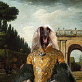 Afghan Hound-the Afternoon Promenade In Rome  Canvas Fine Art Print by Sandra Sij