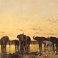 African Elephants by Charles Emile de Tournemine