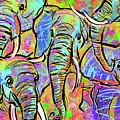 African Elephants by Morgan Richardson