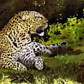 African Leopard by Paul Dene Marlor
