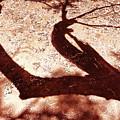 African Shadow Tree Nr 5 by Menega Sabidussi