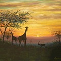 African Sunset by Don Lindemann