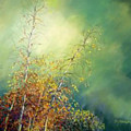 After The Rain by Delores Herringshaw