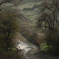 After The Rain by Robert Ball