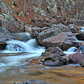 After The Rains On Pickle Creek 1 by Greg Matchick