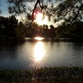 Afternoon At The Lake 2 by Tammie J Jordan
