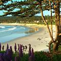 Afternoon On Carmel Beach by Charlene Mitchell