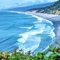 Agate Beach by Lisa Dunn