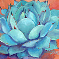 Agave 3 by Athena Mantle Owen