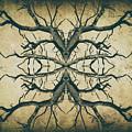 Aged Sepia Tree Dual by John Williams