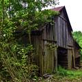 Aged Wood Barn by Soni Macy