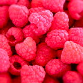 Agenda For Today ... Raspberry Jam by Gwyn Newcombe