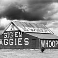 Aggie Barn #2 by Denise Deskin