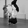 Aikido Up And Down by Frederic A Reinecke
