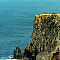 Aill Na Searrach Cliffs Of Moher Ireland by Teresa Mucha