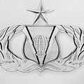 Air Force Specialty Badge by Omari Slaughter