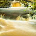 Aira Force by John Paul Cullen