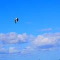 Airborne Kitesurfer  by John W Smith III