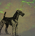 Airedale Terrier by Movie Poster Prints