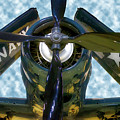 Airplane Propeller And Engine Navy by Thomas Woolworth