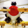 Airplane Wooden Propeller And Engine Pt 22 Recruit 02 by Thomas Woolworth
