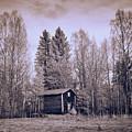 Aitta by Jouko Lehto